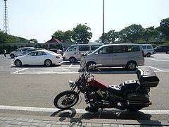 9a888f77.jpg