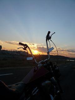 夕陽とスティード