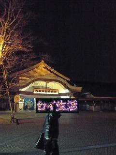 お台場大江戸温泉物語