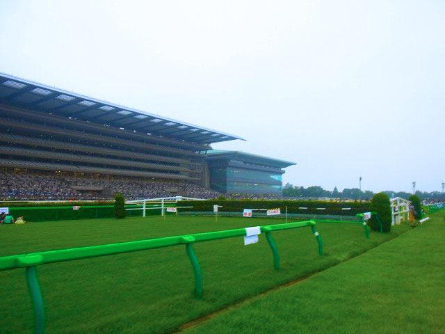 東京競馬場花火大会 (4)