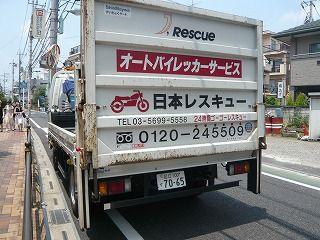日本レスキュー