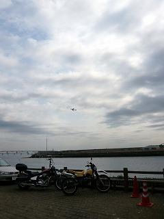 京浜島とスロライ君