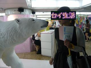 白熊と彼女