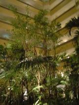 フロアのジャングル