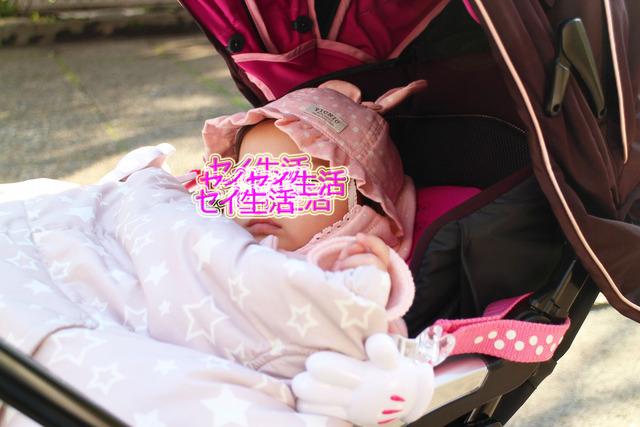 東京の桜 (3)