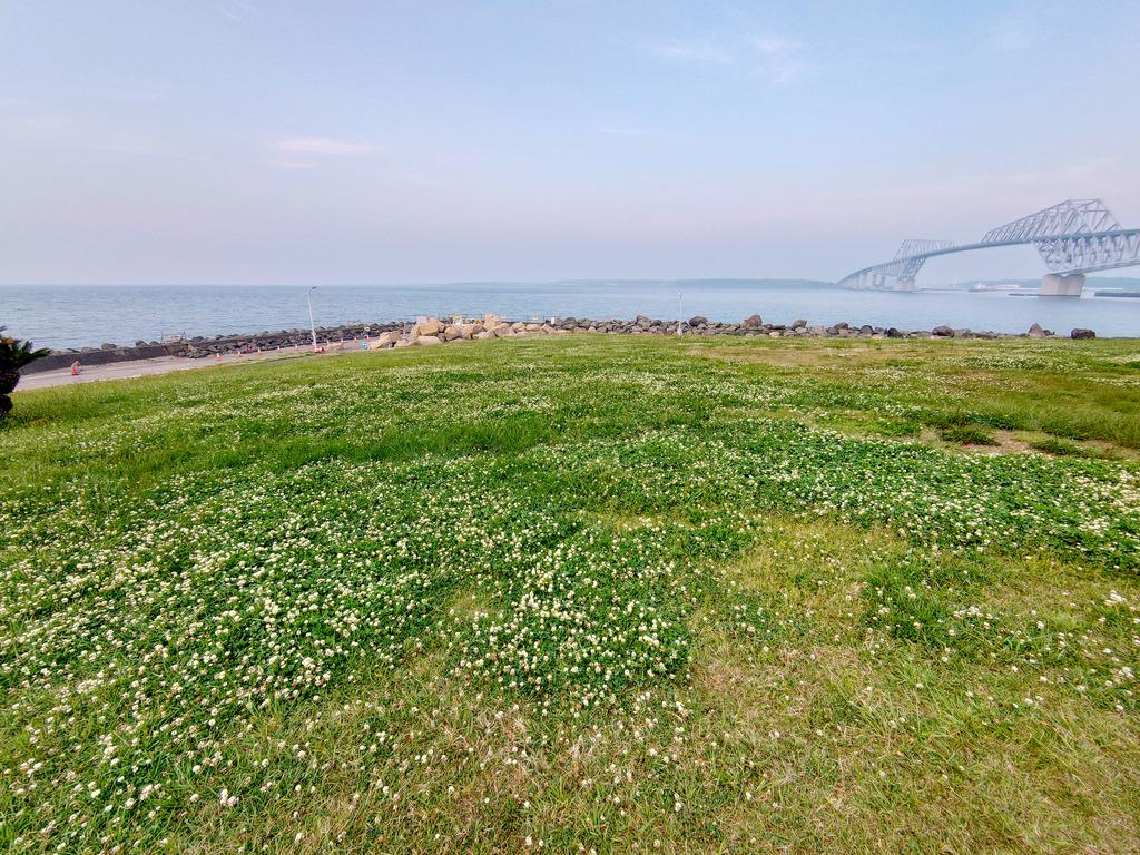 朝焼けの散歩道 (6)