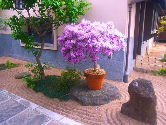 前野原温泉 (3)