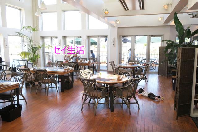 妙見島レストラントリム (26)