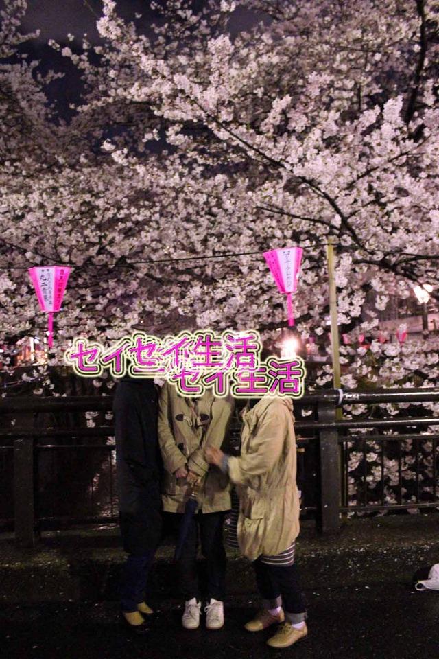 中目黒桜まつり (2)