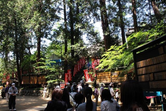 塩船観音寺 (2)