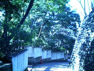 動物霊園004