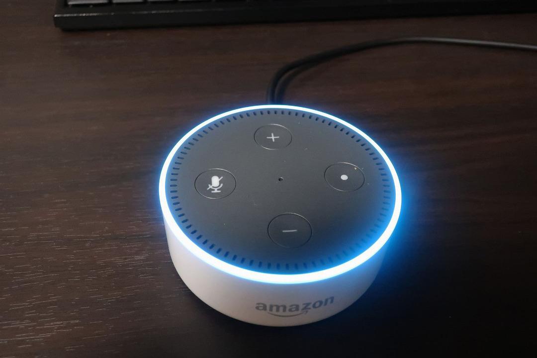 Amazonエコーdot (7)