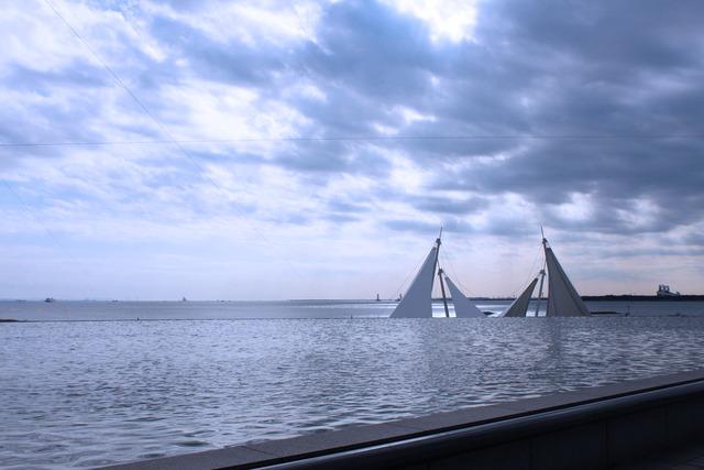 水族館 (7)