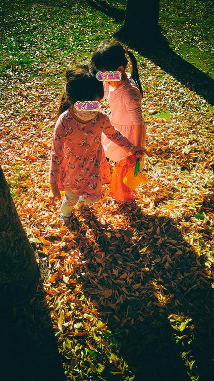東京の下町の秋を見つけに散歩 (14)