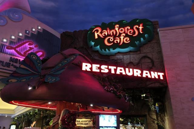 レインフェレストカフェ (4)