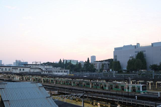 上野 (15)