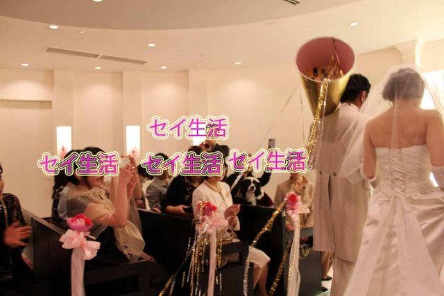 秀芸ネコ結婚式 (3)