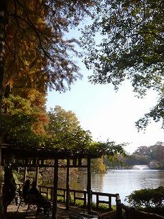 池とベンチ