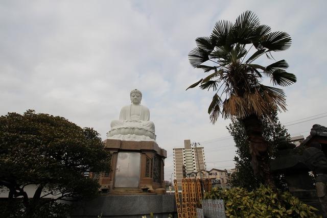曹洞宗寺院常光寺 (2)