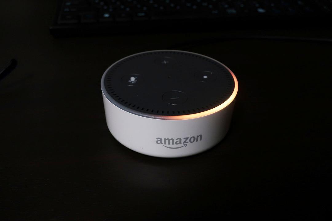 Amazonエコーdot (6)