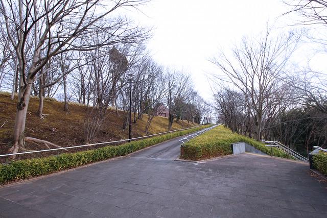 旧小松川閘門 (2)