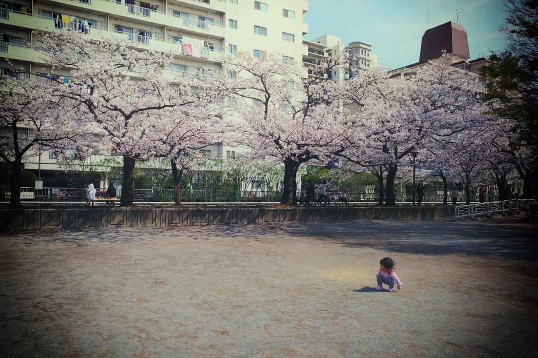 公園遊び (3)