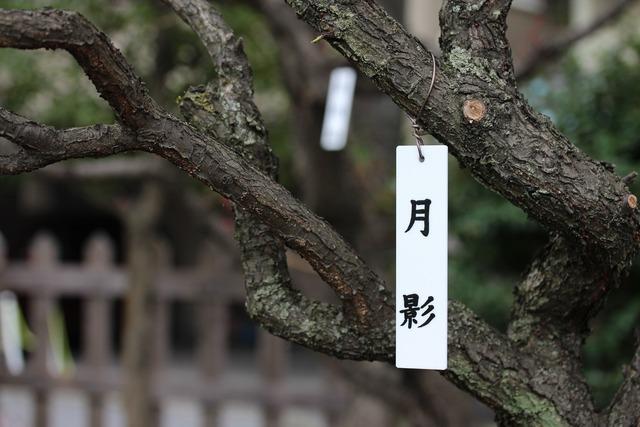 亀戸天神社 (32)