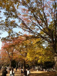 井の頭公園・紅葉