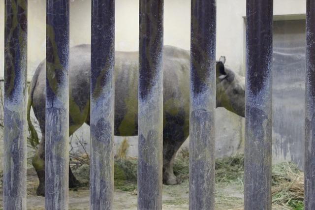 上野動物園 (28)