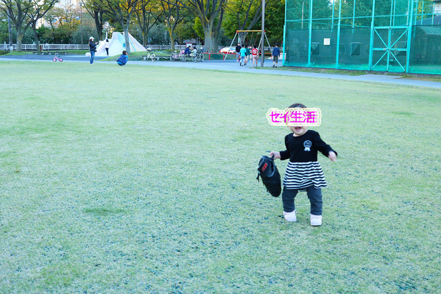公園 (9)