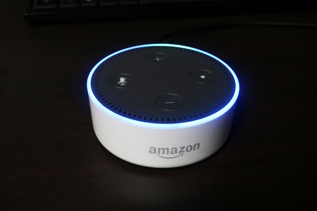 Amazonエコーdot (5)