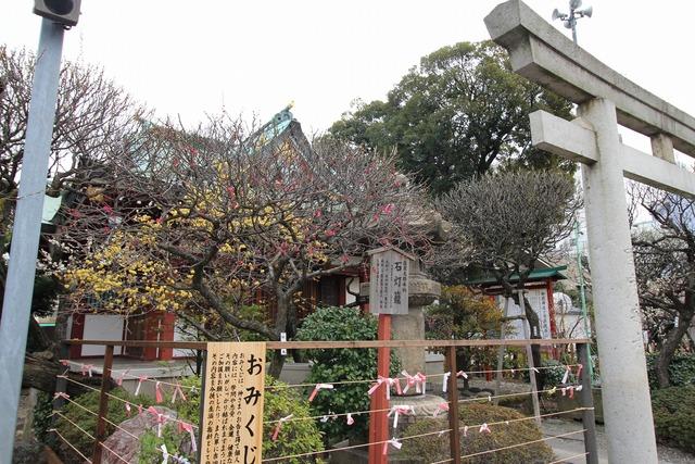 亀戸天神社 (1)
