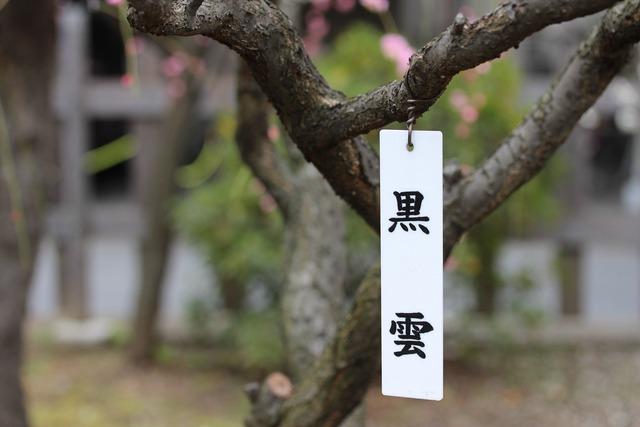亀戸天神社 (24)