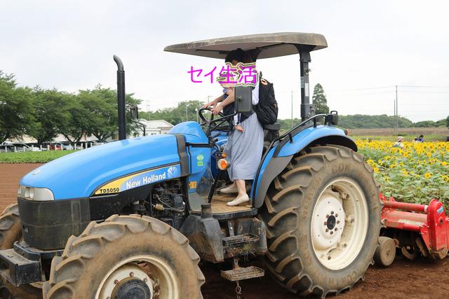 成田ゆめ牧場 (14)