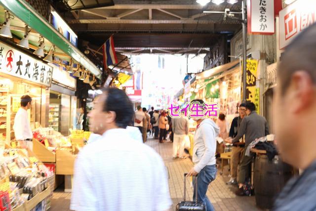 上野 (8)