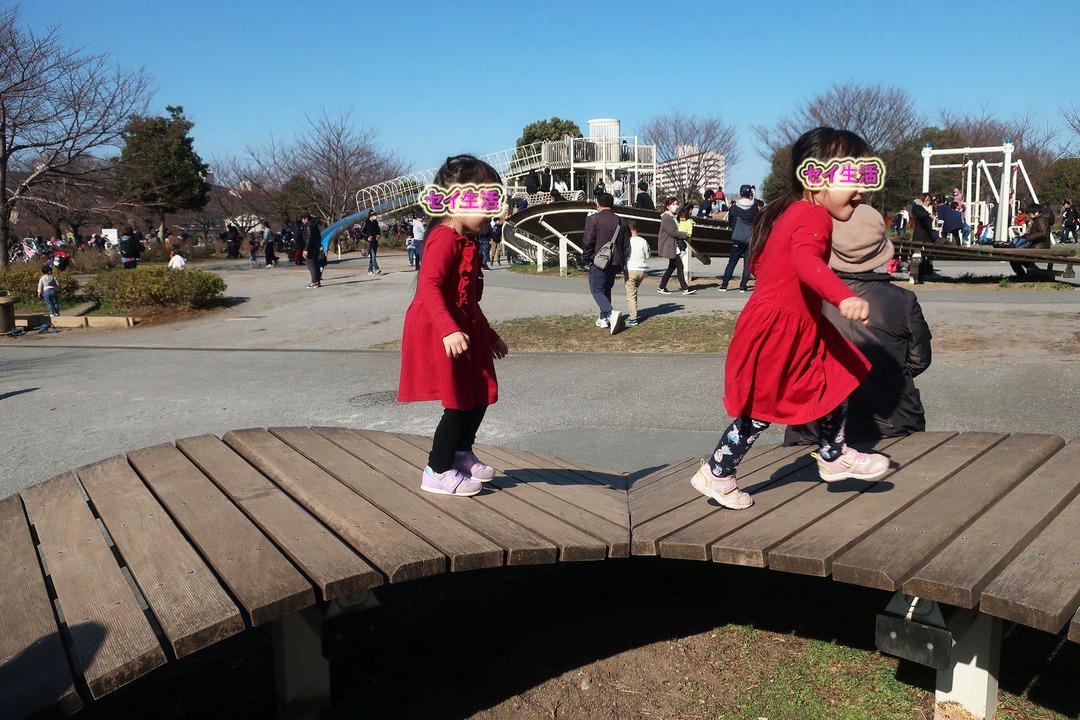 小松川公園 (23)