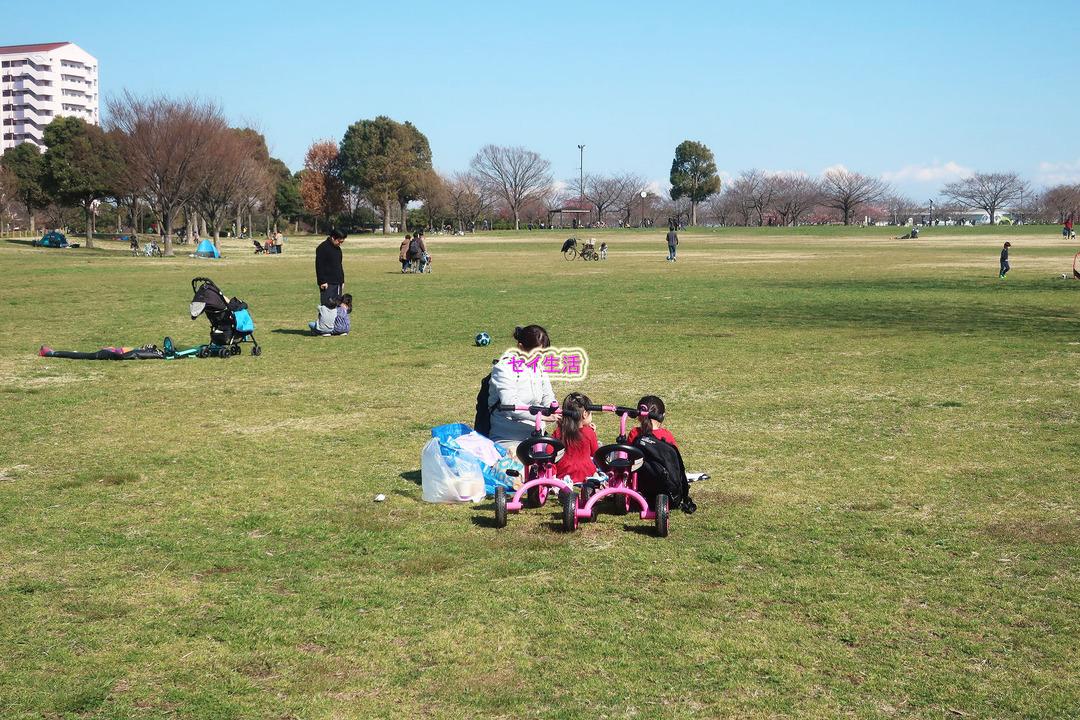小松川公園 (19)