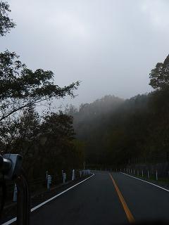 奥多摩周遊道路と霧