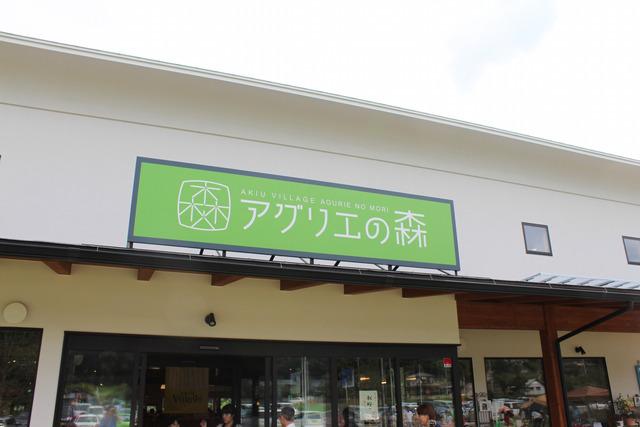 秋保ビレッジ (2)