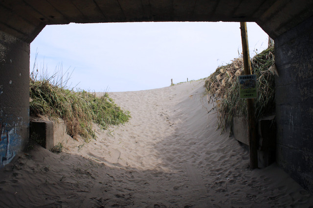 九十九里浜 (7)