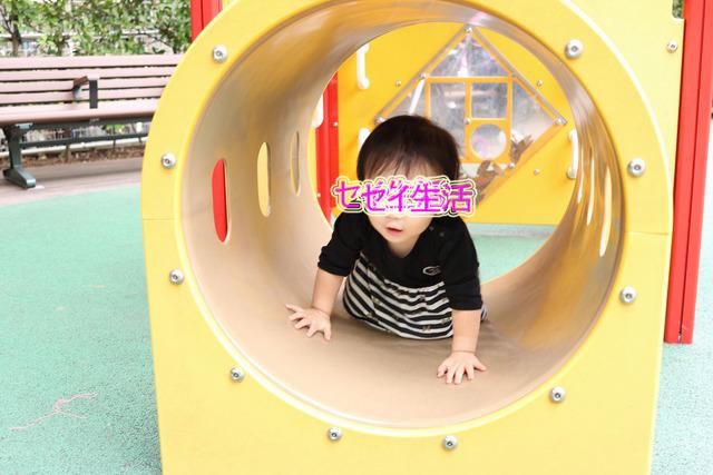 公園 (3)