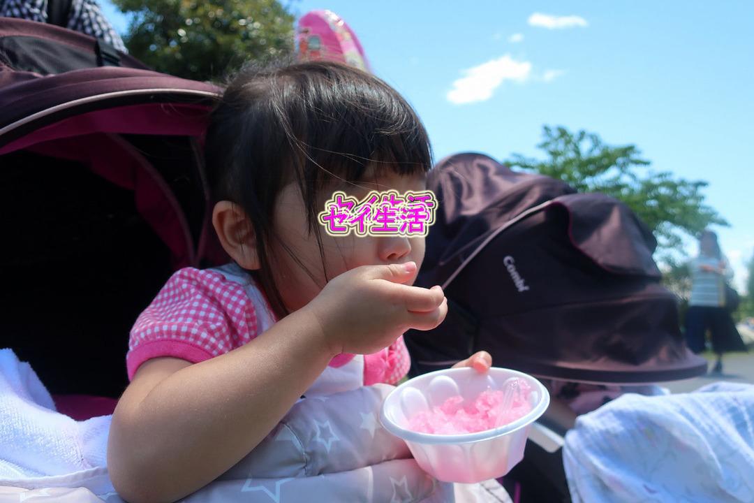 そらまめ祭り (15)