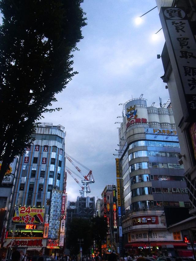 新宿アカシア (2)