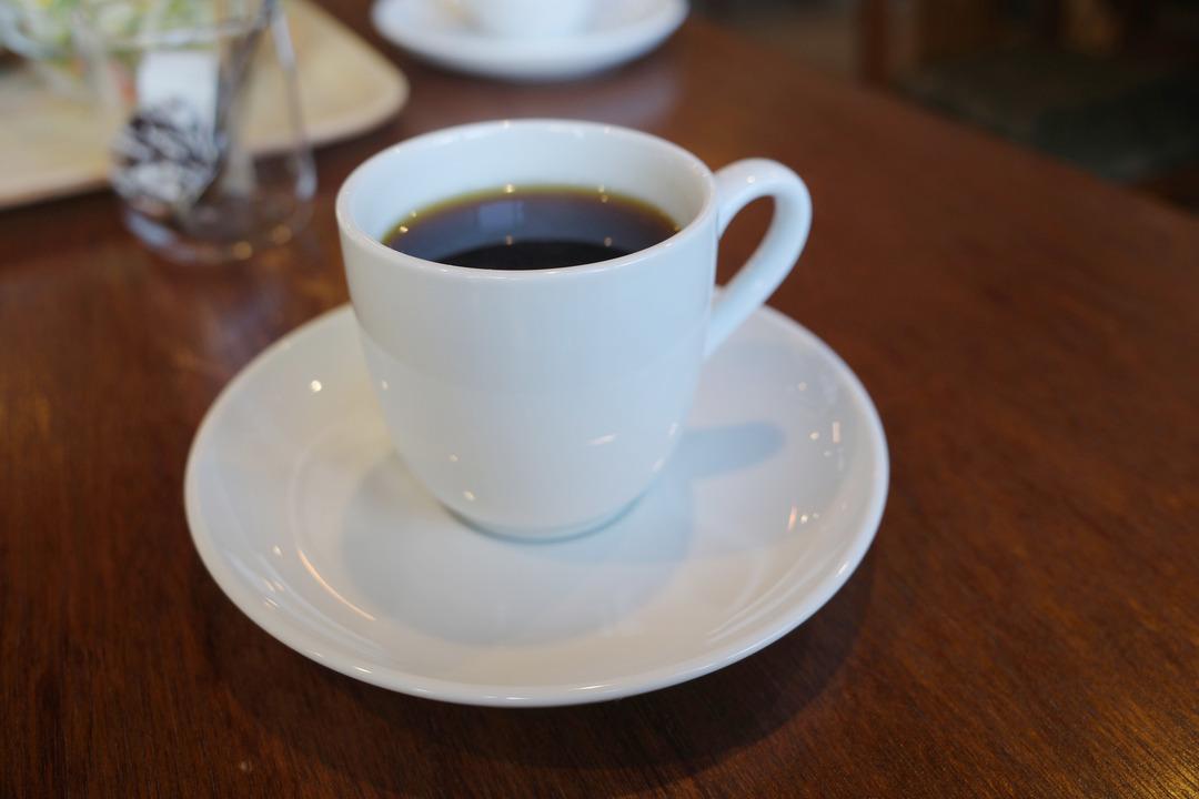 春の訪れと喫茶店  (3)