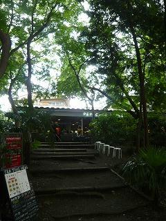ペパフォレストカフェ