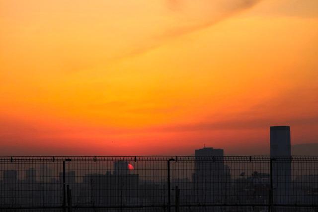屋上農園からの夕日