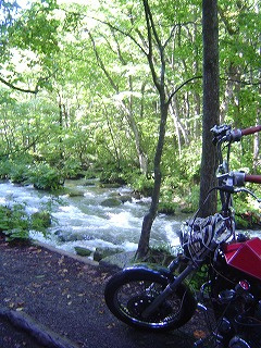 奥入瀬渓流とスティード