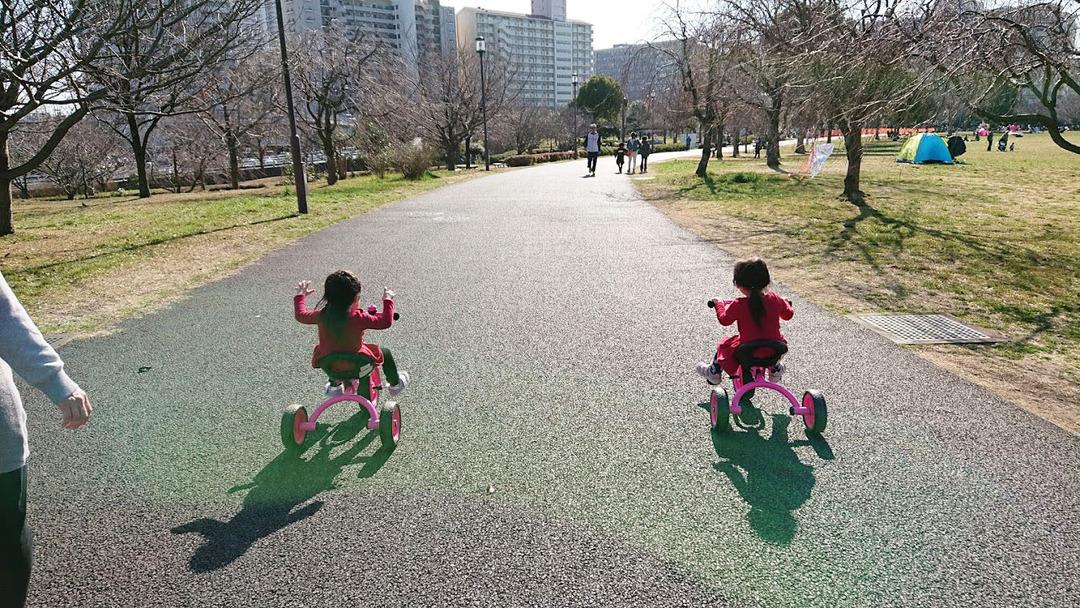 小松川公園 (7)