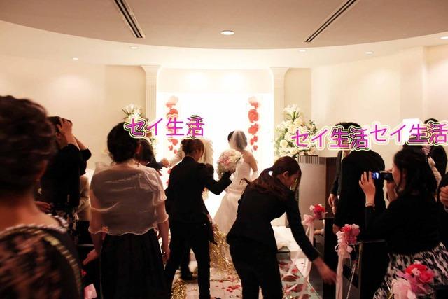 秀芸ネコ結婚式 (4)