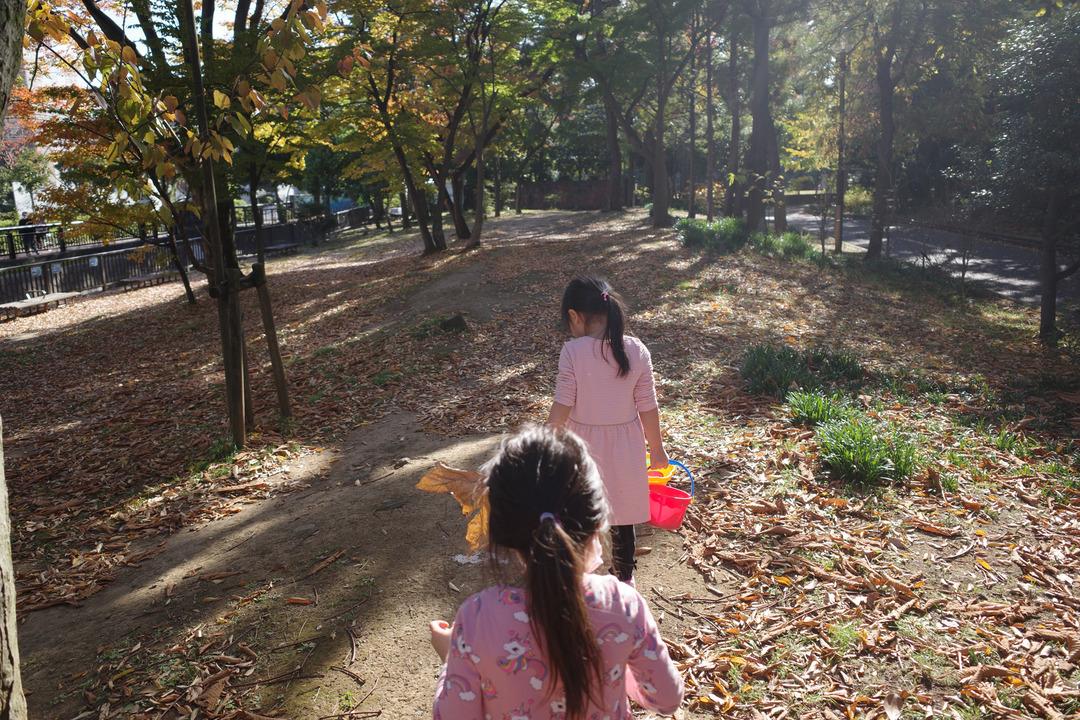 東京の下町の秋を見つけに散歩 (12)